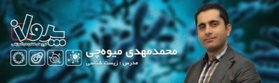 استاد محمدمهدی میوهچی