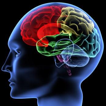راههایی برای هوشیار نگه داشتن ذهن