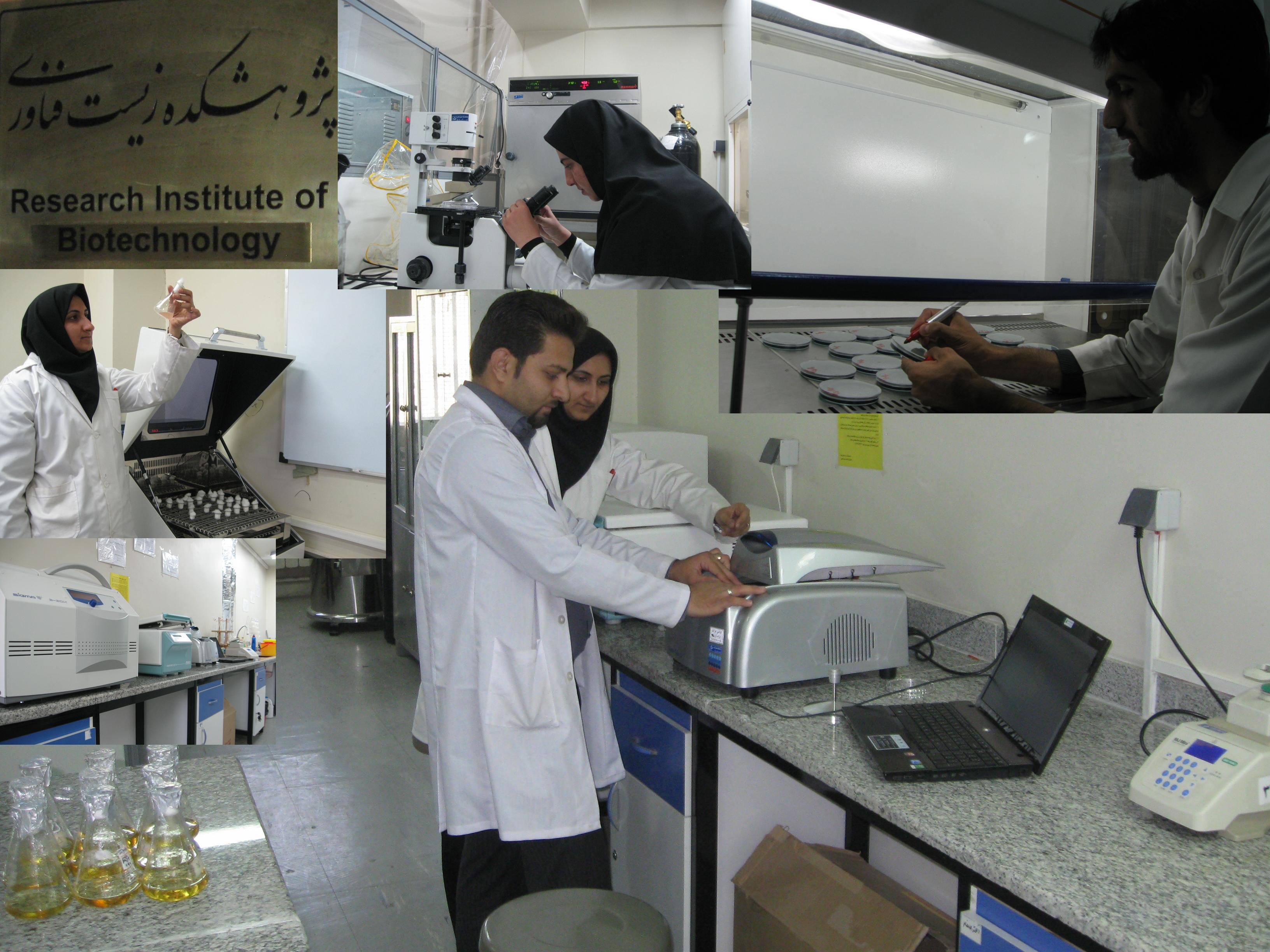 جایگاه 21 ایران در تولیدات علمی 2014 زیست فناوری