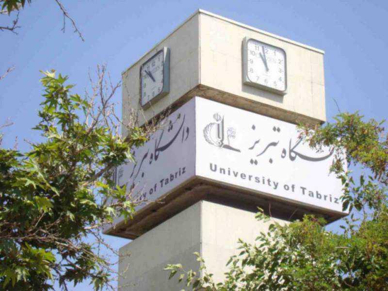تاسیس دانشگاه مشترک ایران و ترکیه بررسی شد