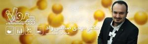 B06-Salehi