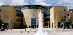 دانشگاه یورک