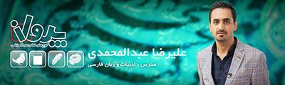استاد علیرضا عبدالمحمدی